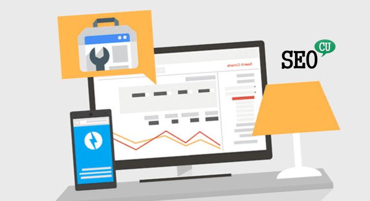 Google Search Console Tercih Edilen Etki Alanı ve URL Ayarları