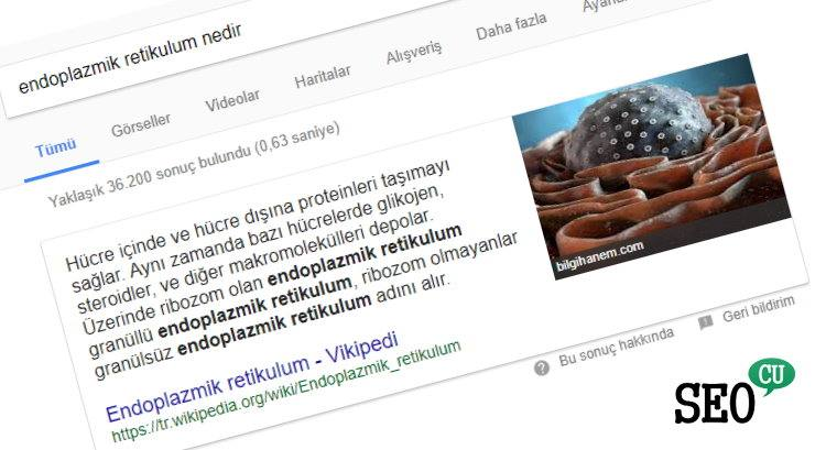 Featured Snippets ve En Güncel Optimizasyon Teknikleri